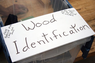Photo: Ed Karch, our Wood Wizard, is ready to help you with your Wood ID -- just bring in a piece showing freshly cut end grain, and Ed will tell you what it is.