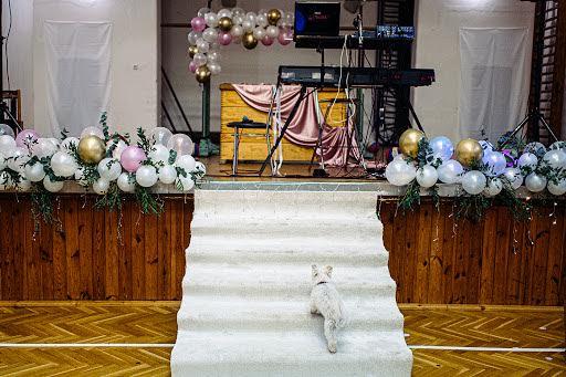 Wedding photographer Petr Wagenknecht (wagenknecht). Photo of 15.09.2019