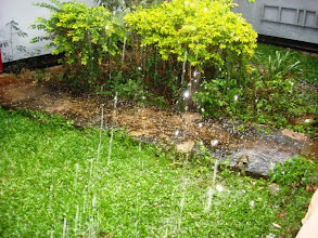 Photo: A few days ago we experienced quite the hail storm.