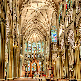 Cathedral by Richard Michael Lingo - Buildings & Architecture Places of Worship ( buildings, church, cathedral, architecture, covington )