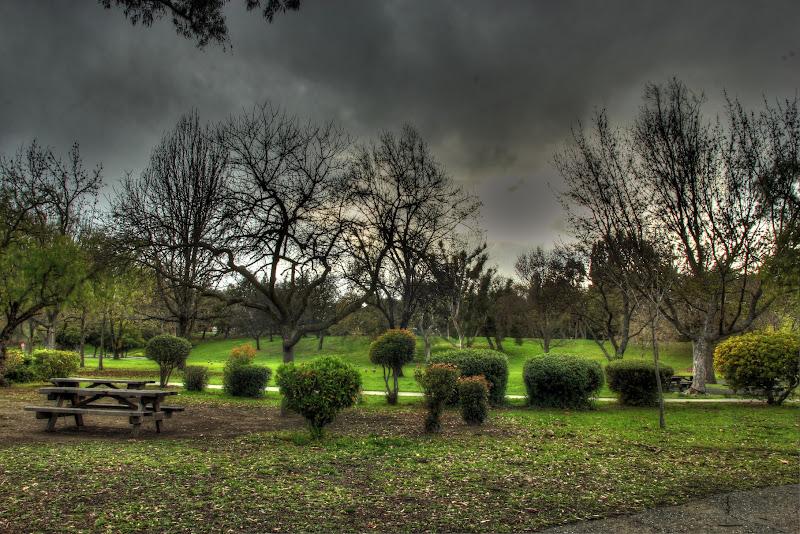 Photo: Vasona Park