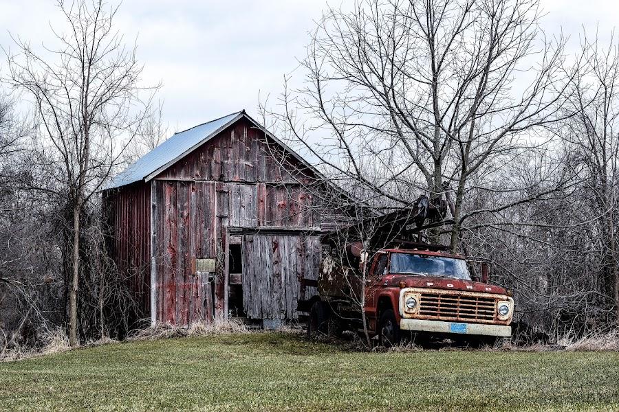 by Jason Lockhart - Transportation Automobiles ( farm, wisconsin, old pickup, old barn, rustic, jefferson county )