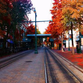 by Josh Pingel - City,  Street & Park  Street Scenes