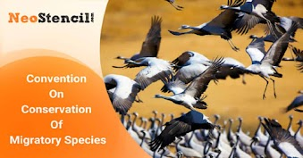 Convention on conservation of migratory species