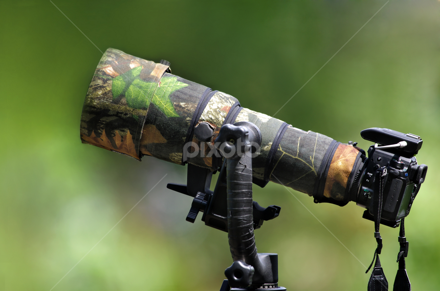 Camouflage Lens Coat by Ken Goh - Products & Objects Technology Objects ( camouflage lens coat long lens depth of field dof creamy green background  pentax k5 sigma 500/f4.5 )