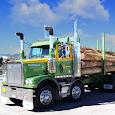 Euro Cargo Truck Drive 2018