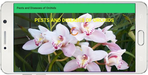 Pests and Diseases of Orchids - náhled