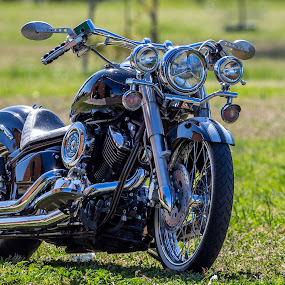 by John Torcasio - Transportation Motorcycles ( sports, motorcycle, yamaha v-star, classic, 1100 )