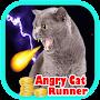 angry cat runner rush 3d