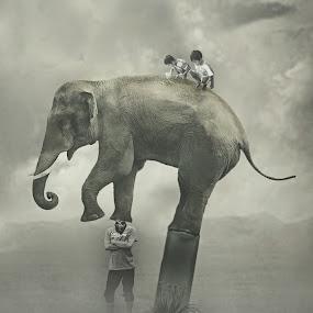:: Gajah-gajah'an:: by Wahyu Tri - Digital Art People