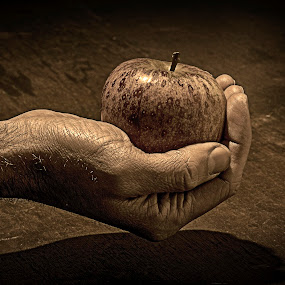 Apple by Alex Barrow - People Body Parts ( hand, b&w, wood, apple, pwchands,  )