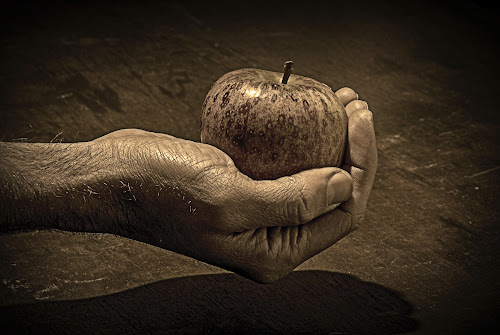 Apple by Alex Barrow - People Body Parts ( hand, b&w, wood, apple, pwchands,  )