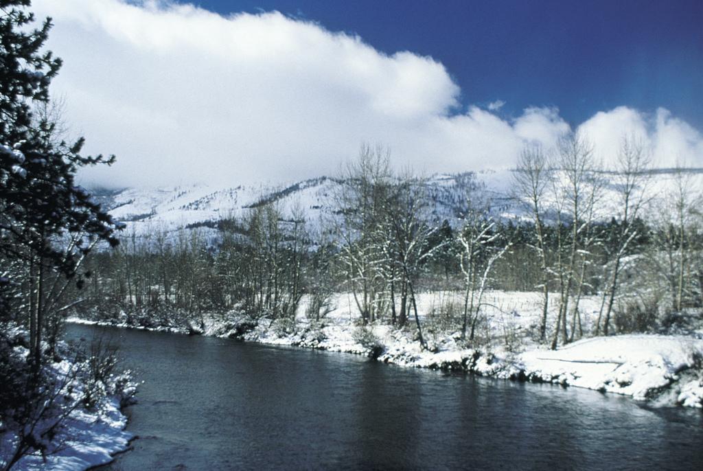 icy Sierra Nevada.jpg