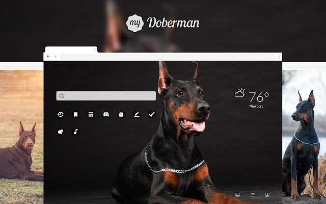 My Doberman Dog & Puppy HD Wallpapers