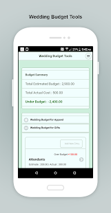 Our Wedding Planner Tools - náhled