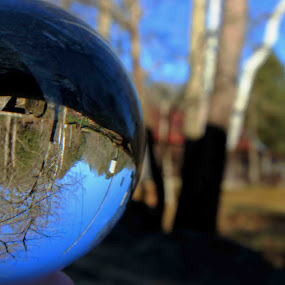 Crystal Ball  by Karen Harris - Artistic Objects Glass ( water, crystal ball, glass, trees, river )