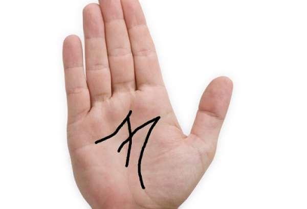 Vân tay chữ M
