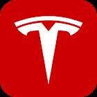 Tesla Motors icon