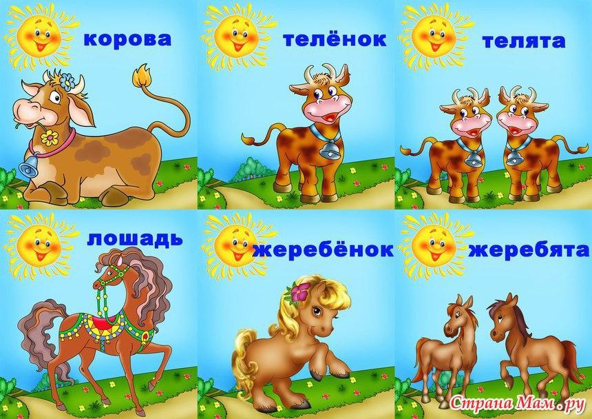http://st.stranamam.ru/data/cache/2013dec/03/31/10283252_25442.jpg