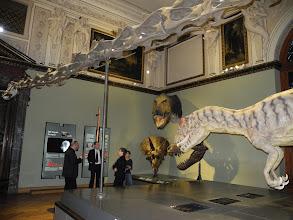 Photo: Mathias HARZHAUSER, Directeur de la partie Géologie-Paléontologie du Musée NHM, fait une visite commentée du Musée à M. Yves JEAN Président de l'Université de Poitiers, et Mme Sabine PETIT Directrice de l'IC2MP.