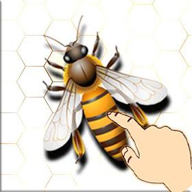 Bee Smash Game