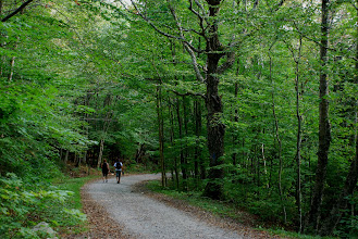 Photo: On the CCC Trail at Underhill State Park by Linda Carlsen-Sperry.