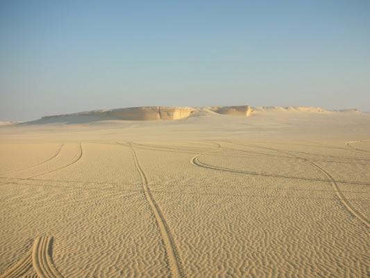 Tracce nel deserto di Michela7