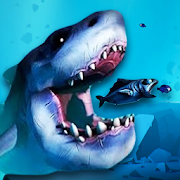 Fish Feed Simulator Knowledge