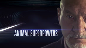 Animal Superpowers thumbnail