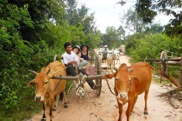 Ox cart ride in Siem Reap