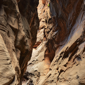 zions narrows by Mark Warick - Landscapes Caves & Formations ( narrows )