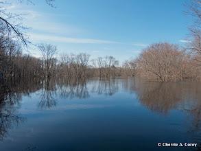 Photo: Upstream, off Monument St.