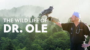 The Wild Life of Dr. Ole thumbnail
