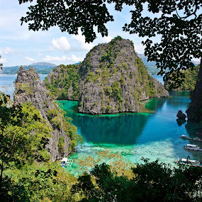 My Travel by Mert Docdor - Nature Up Close Leaves & Grasses ( nature, cliff, lake, leaves, landscape, philippines )