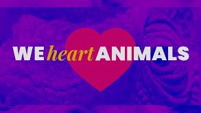 We Heart Animals thumbnail