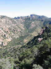 Photo: Climbing #2.