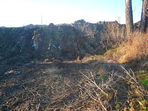 Photo: 12.1.2014 - Údajná betonová zeď, která by měla oddělovat materiál skládky od okolí a manipulační betonová plocha - posuďte sami, já tam tedy ani jedno nevidím. — Dekontaminační plocha Rokytí.