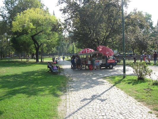 I giardini di settembre di Roccia83