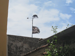 Photo: Maybe the pirate's flag?  (nice, the pig, though)