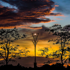 two tress and a lamp post by the sunset by Andrian Andrew - Novices Only Landscapes ( tree, sunset, trees, landscape, lamp post )