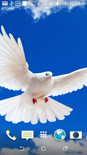 Beautiful Doves Wallpaper