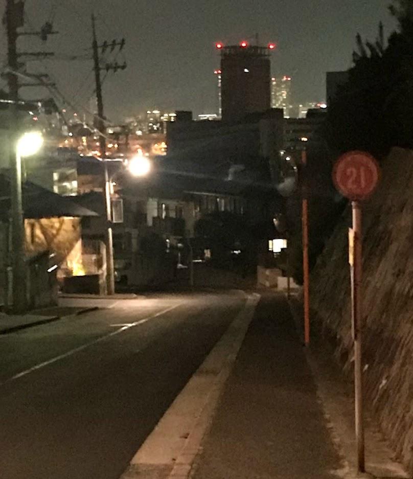大原神社からの夜景