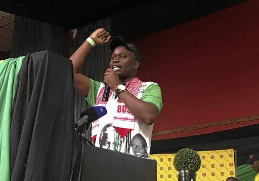 The provincial chairperson of the ANC Youth League in Mpumalanga, Tim Mashele, has urged his members to elect young people who won't sleep during crucial debates in parliament.