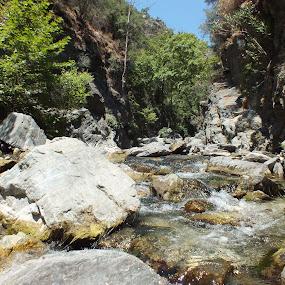 A River on the Kaz Mountains by Halime Pelitçi - Nature Up Close Water ( mountain, nature, nehir, dağ, kaz, doğa, kaz dağı, turkey, river )