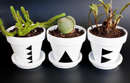 DIY Craft Pot Plants Design