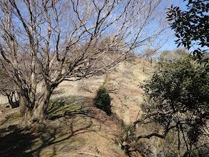 大鉢山の登り