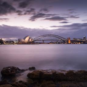 Opera and Harbour Bridge by Scott Thiel - Buildings & Architecture Bridges & Suspended Structures ( harbour, australia, opera, bridge, sydney,  )