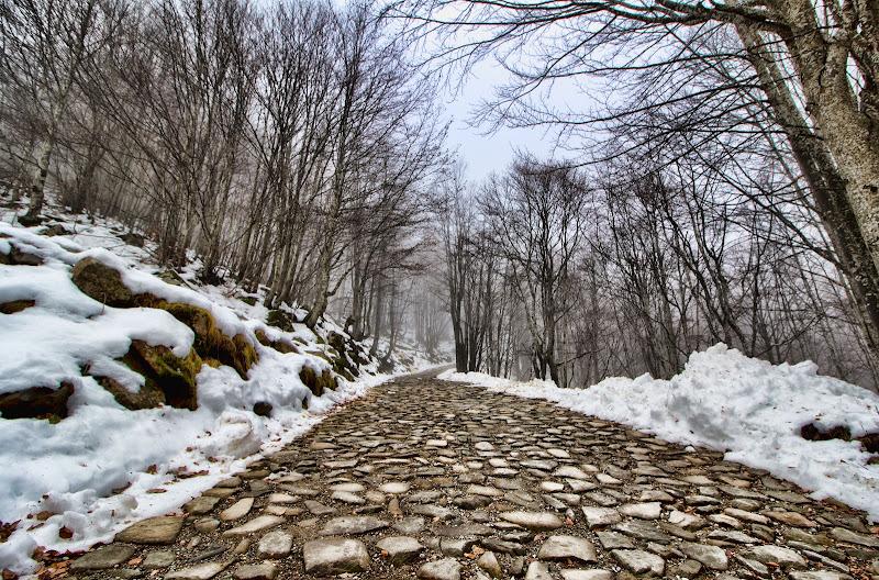 Strada verso la vetta..... di Gianluca Presto