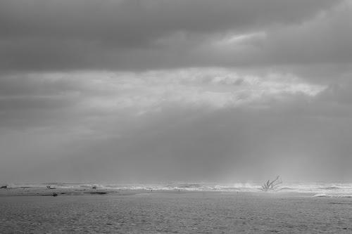 Il mare d'inverno di lady oscar