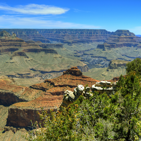 Diversity by Darin Williams - Landscapes Caves & Formations ( clouds, scrub, sky, arizona, trees, canyon, brush, rocks, grand canyon )